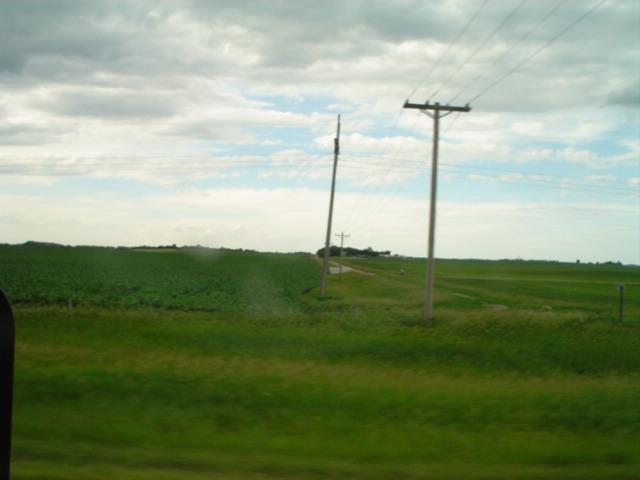 typical prairie scene (MN)