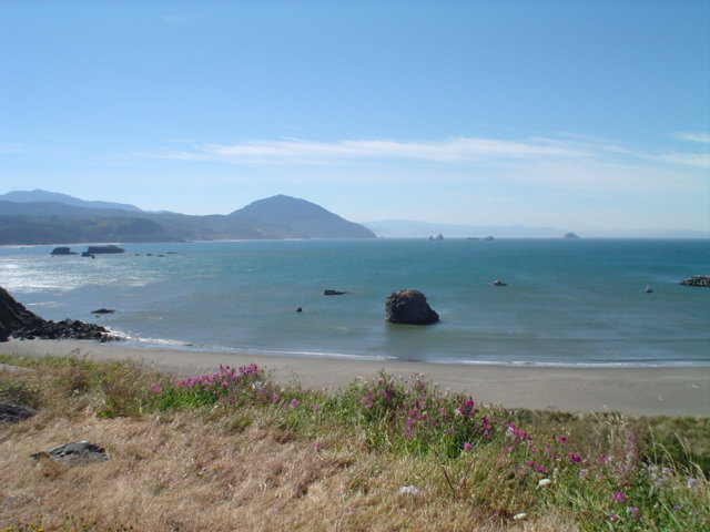 the Oregon coast in the morning
